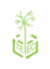TEEC_TEEC Logo (Thin) - green - name.png