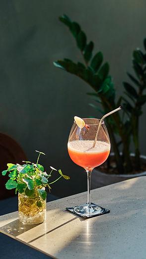 Website.drink 2.jpg