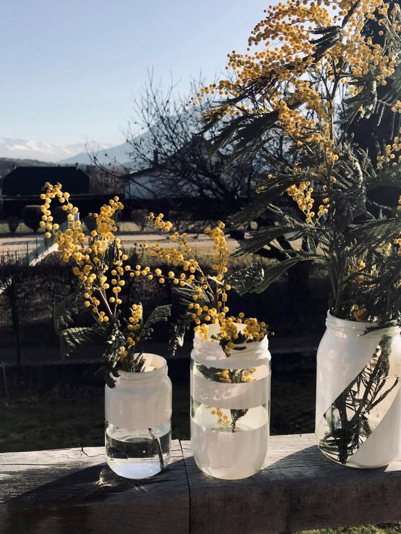 DIY Vases graphiques