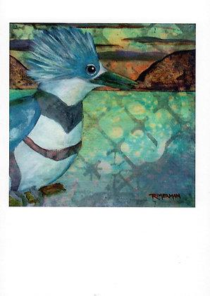Belted Kingfisher-card & envelope