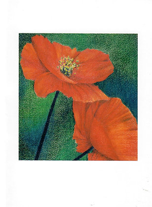 Poppies-card & envelope