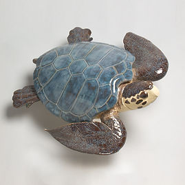 green turtle, turtle, sea turtle, ocean, shore, sculpture, wall art, seashore, new england, marine sculpture, large sculpture, betsey rice, quonochontaug, rhode island artists, Glazed Stoneware
