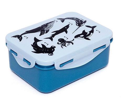 קופסת אוכל כחול חיות ים