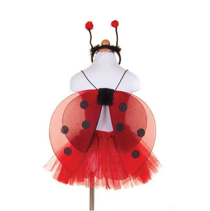 חיפושית