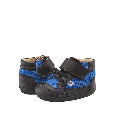 כחול שחור סקוצ