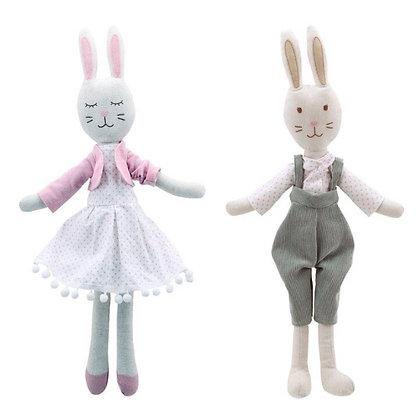 זוג ארנבים