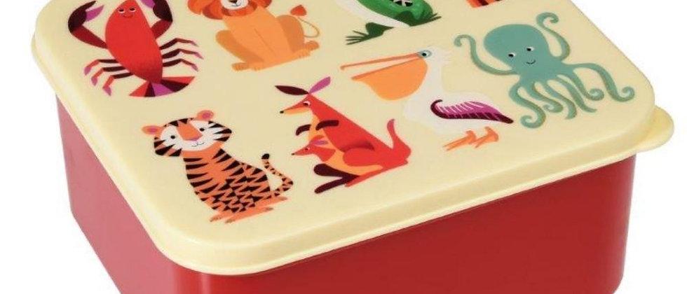קופסת אוכל אריה וחבריו