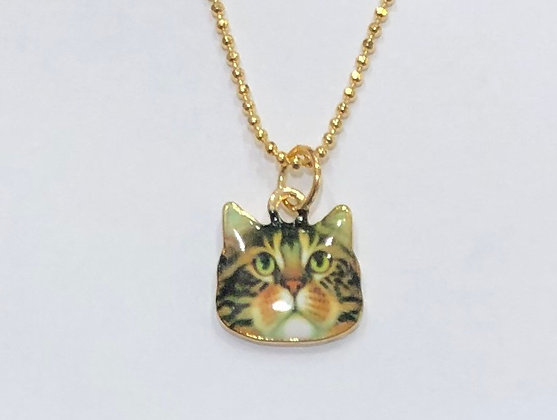 שרשרת חתול