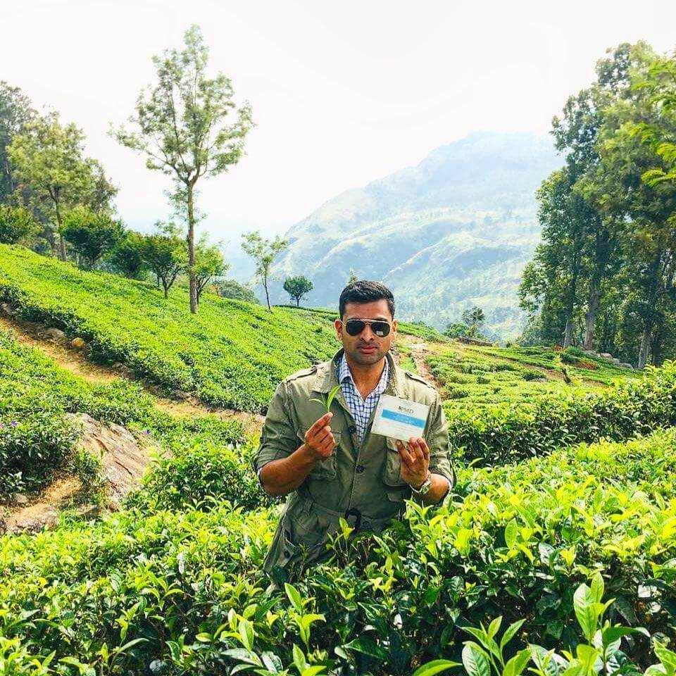 Planters tea range