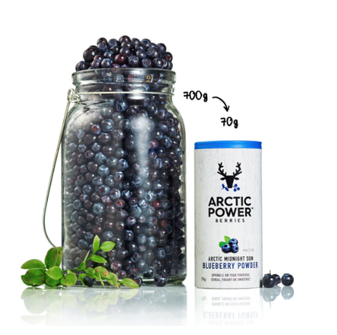 Health Benefits Of Arctic Power Berries