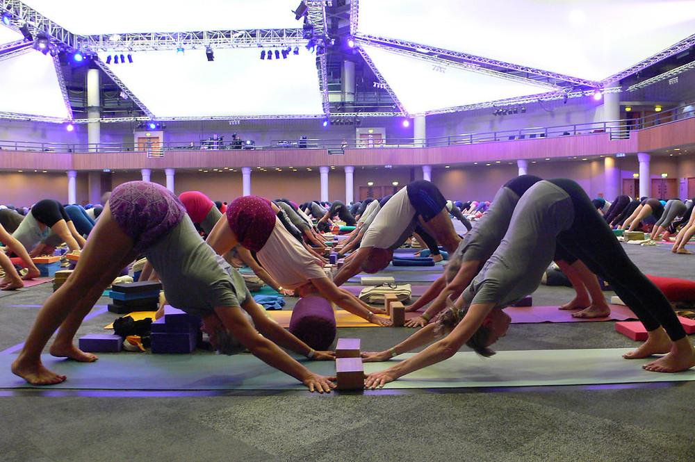 Iyengar Yoga convention, Harrogate