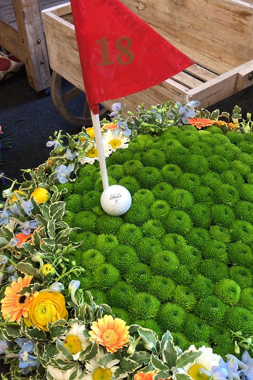 Hole-In-One Special Tribute