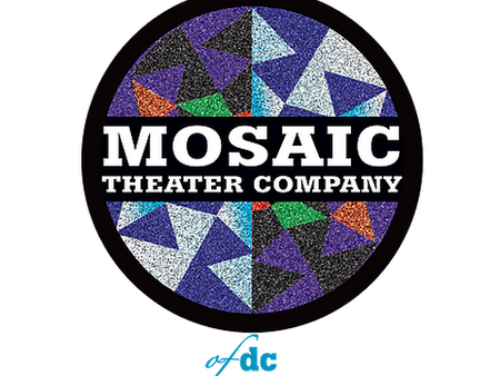 Vicuna at Mosaic Theater Company