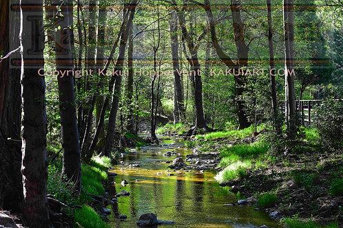 Creek No.1