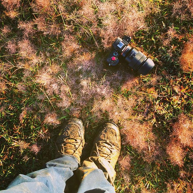 Shoes, camera & adventure