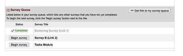 SurveyQueue.jpg