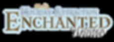 Logo web EW 2017.png