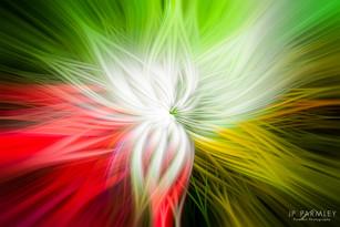 Twirl 9