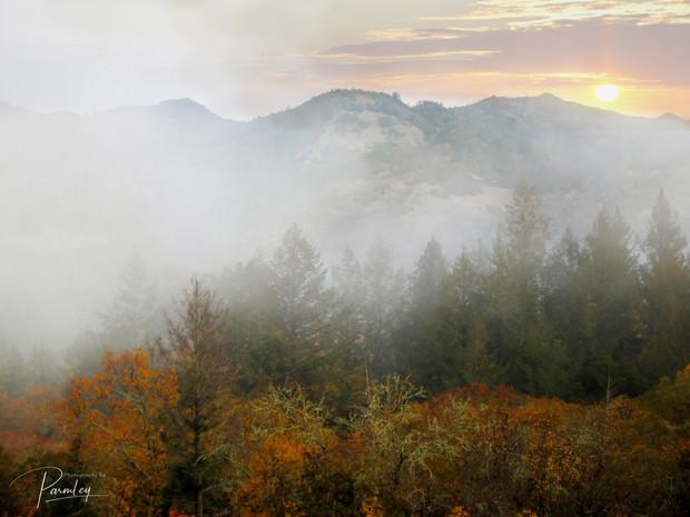 Napa Valley Sun Rise