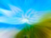 twirl 7-Edit.jpg