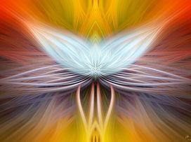 twirl 3-3.jpg