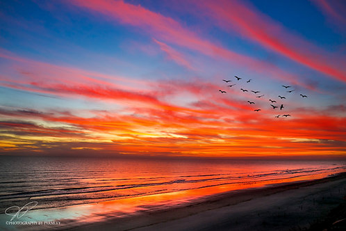 Daytona Sunrise 2