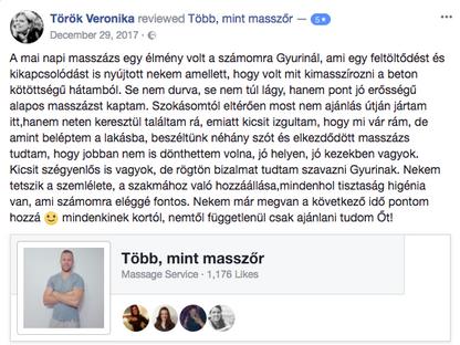 Ajánlás Török Veronika.png