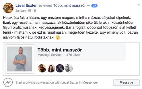 Ajánlás Lévai Eszter.png