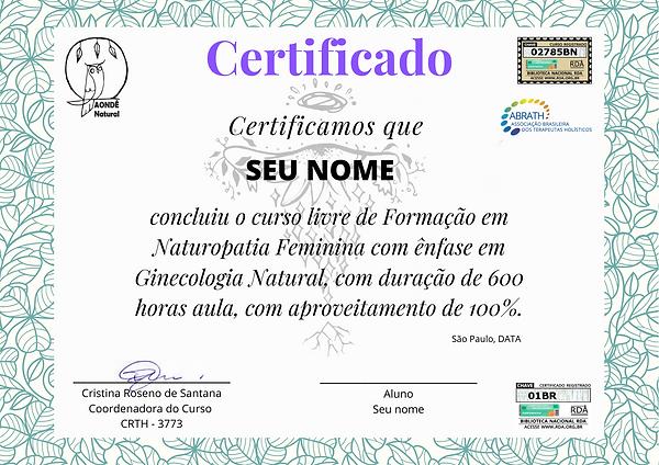 Certificado de Conclusão.png