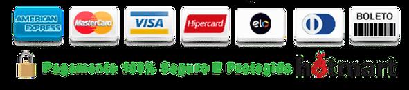 formas-de-pagamento-do-curso.png