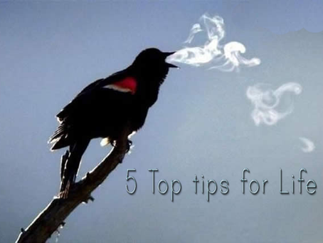 5 Top tips for Life