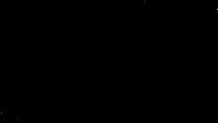 fern_horizontal_b.png