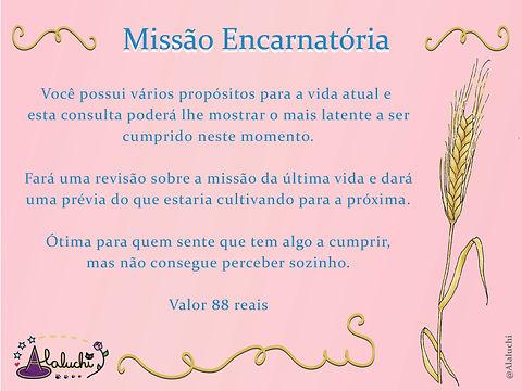 Missão Encarnatória.jpg