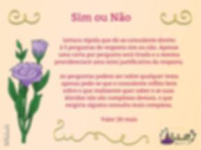 Sim_ou_não_edited.jpg