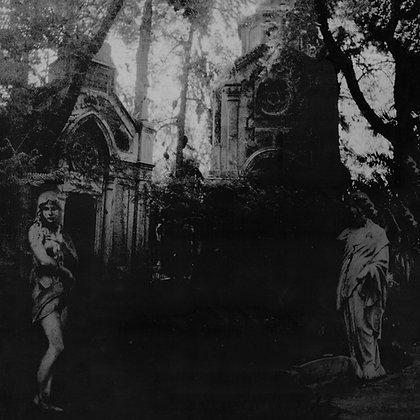 """Flying Across the Misty Gardens - 12"""" LP"""