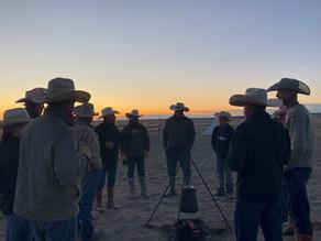 WFCF Storybit: Welch Cattle Co.