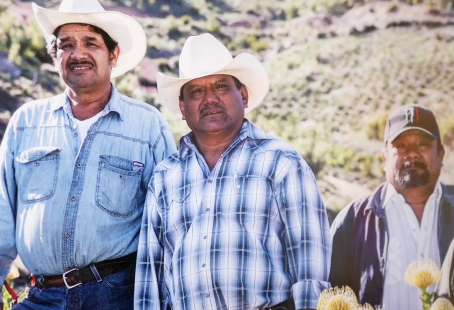 Resendiz Brothers Protea Growers