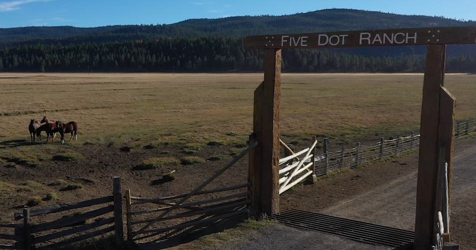 Five Dot Ranch