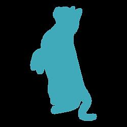 猫3.png