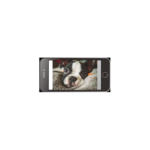 携帯.png