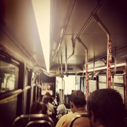 RIPTA bus, on the reg