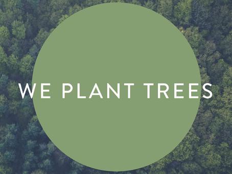 We plant trees 🌳
