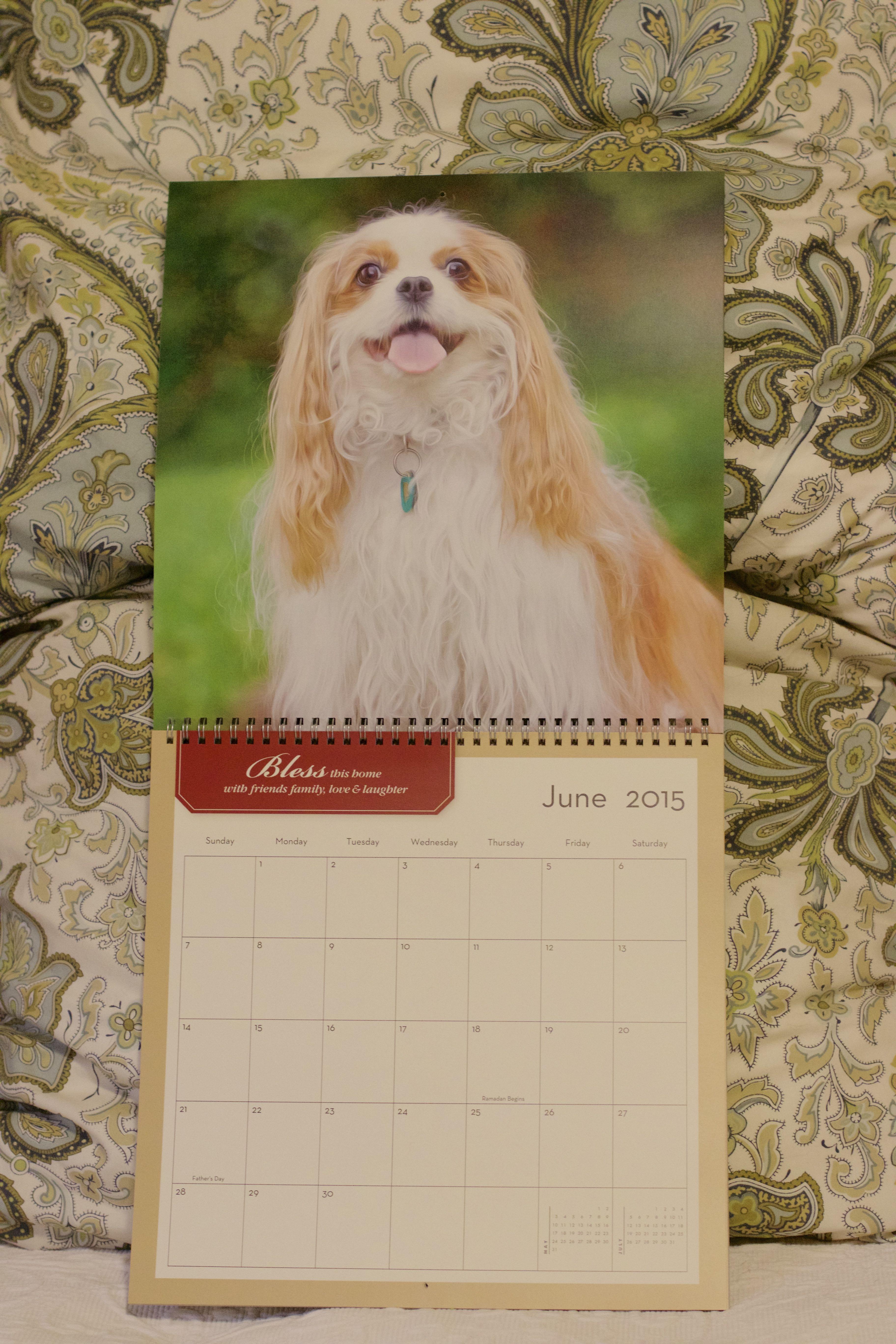 12x12 Photo Wall Calendars