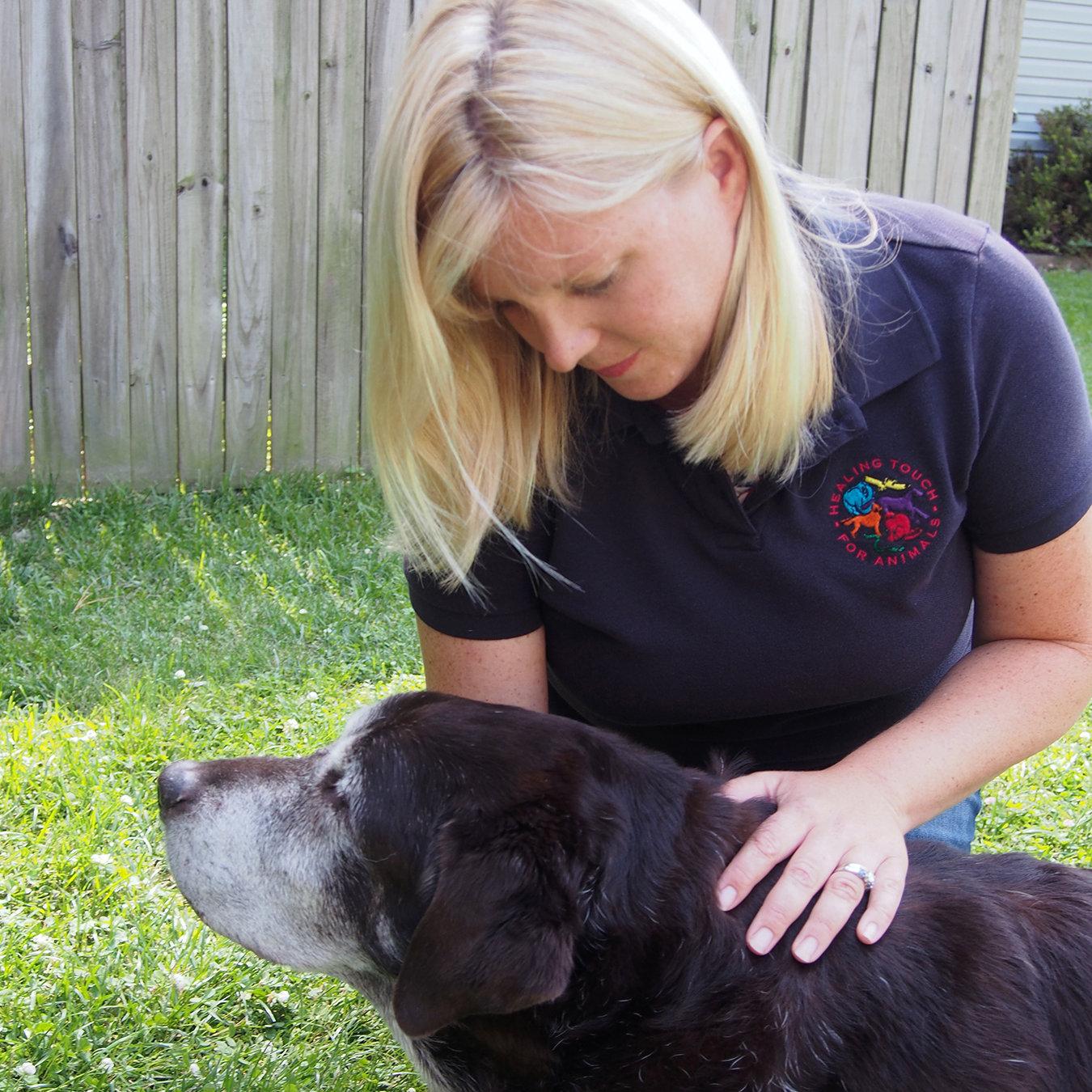 Additional Animal Healing Session