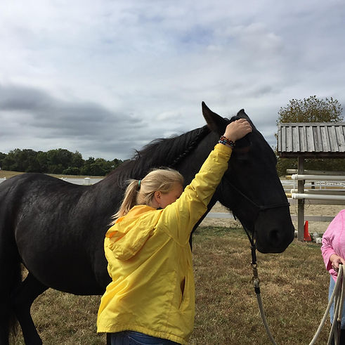 HTA with horse at CP.jpg