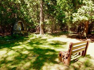 The Original Mary's Grove
