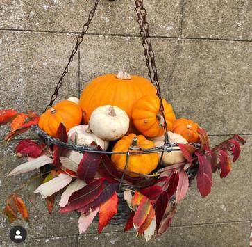 Autumnal Hanging Basket