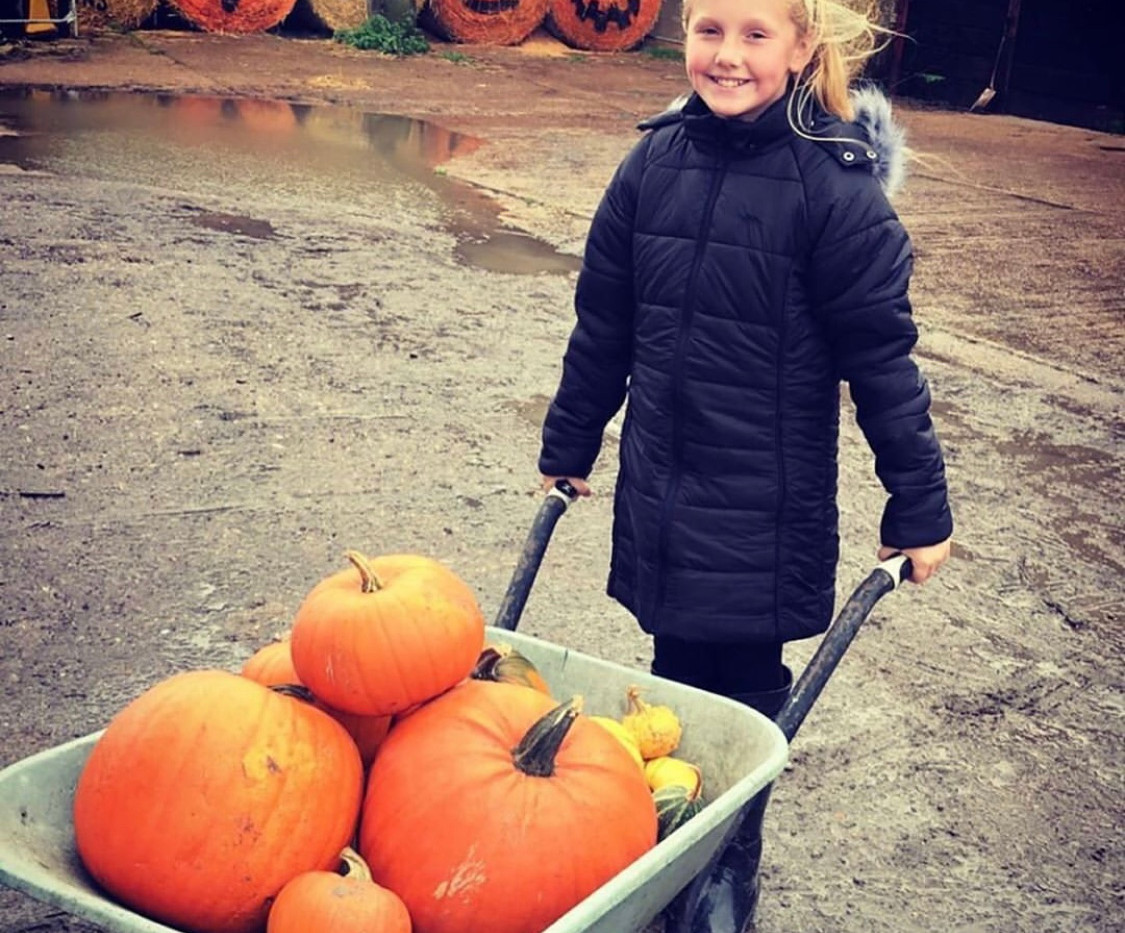This Young Lady With her Pumpkins