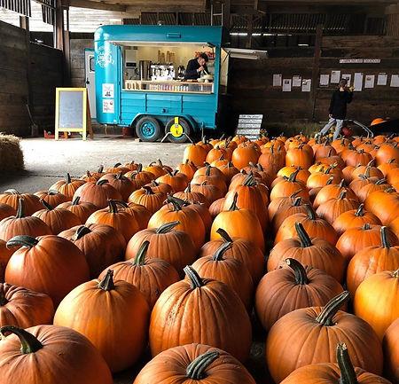 The Pumpkin Barn.jpg