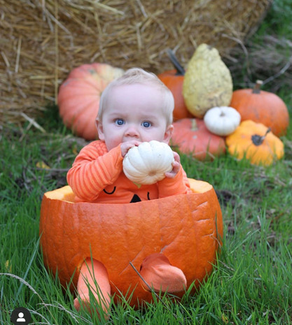 Our Giant Pumpkin for a Baby Photoshoot
